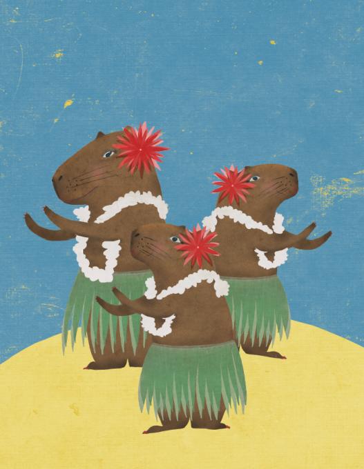 Blue Island Press, Capybara hula
