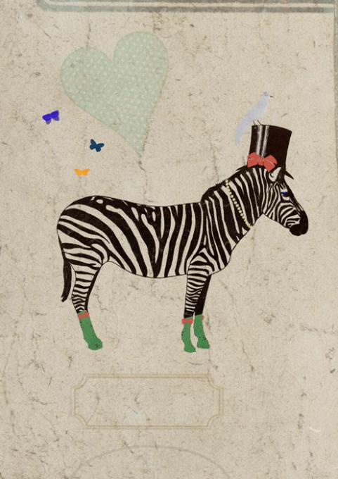 Lagom, Zebra