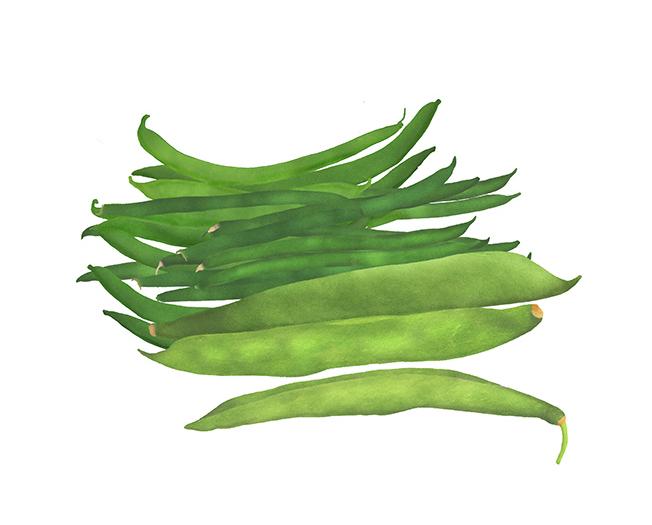 Waitrose, beans