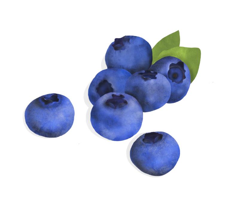 Waitrose, Blueberries