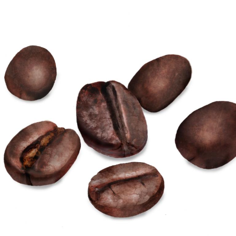 Coffee Beans, Waitrose