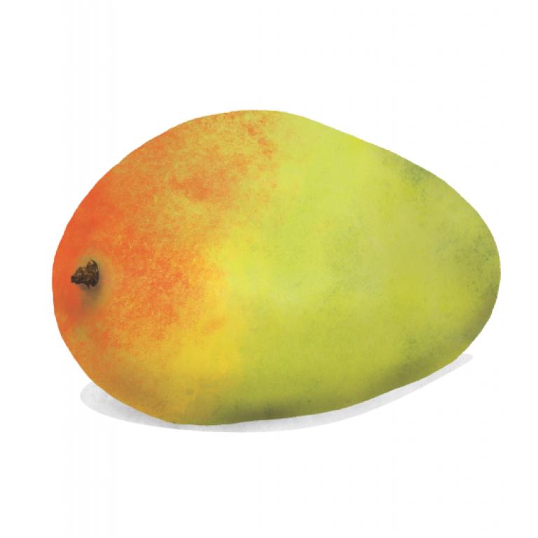 Mango, Waitrose