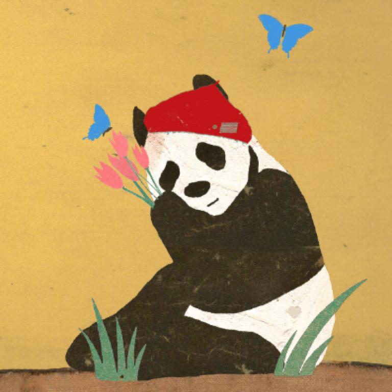 Lagom, Panda