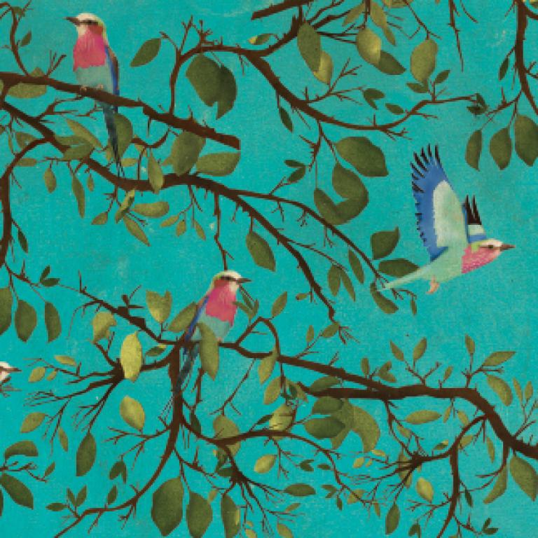 Holler Bird Gift wrap for Lagom